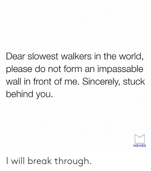 Dank, Memes, and Break: Dear slowest walkers in the world,  please do not form an impassable  wall in front of me. Sincerely, stuck  behind you.  MEMES I will break through.