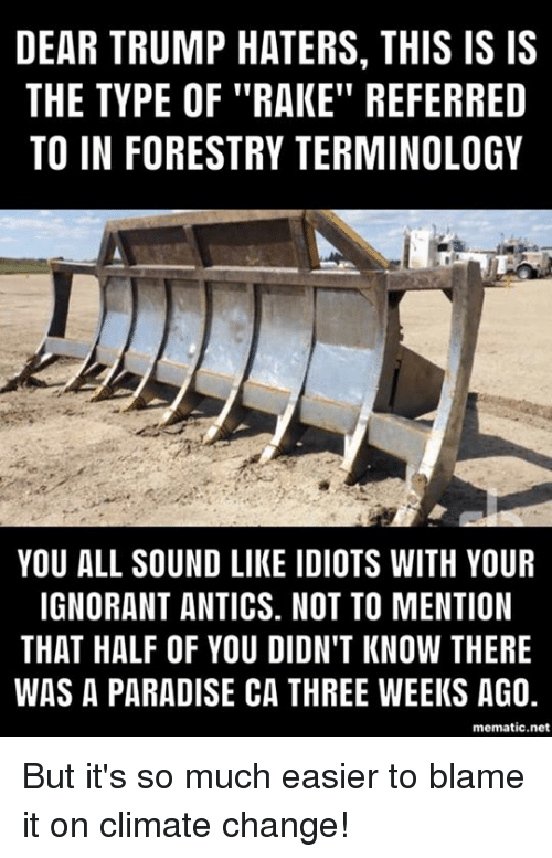 """rake: DEAR TRUMP HATERS, THIS IS IS  THE TYPE OF """"RAKE"""" REFERRED  TO IN FORESTRY TERMINOLOGY  YOU ALL SOUND LIKE IDIOTS WITH YOUR  IGNORANT ANTICS. NOT TO MENTION  THAT HALF OF YOU DIDN'T KNOW THERE  WAS A PARADISE CA THREE WEEKS AG0,  mematic.net But it's so much easier to blame it on climate change!"""