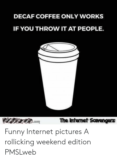 Pmslweb: DECAF COFFEE ONLY WORKS  IF YOU THROW IT AT PEOPLE.  SvO.com  The Internet Scaengers Funny Internet pictures  A rollicking weekend edition  PMSLweb