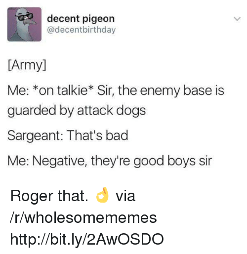 roger that: decent pigeon  @decentbirthday  [Army]  Me: *on talkie* Sir, the enemy base is  guarded by attack dogs  Sargeant: That's bad  Me: Negative, they're good boys sir Roger that. 👌 via /r/wholesomememes http://bit.ly/2AwOSDO