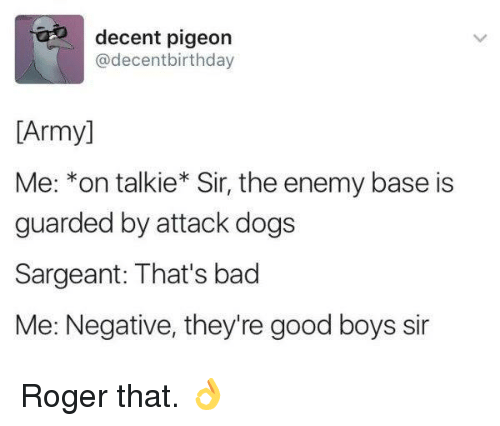 roger that: decent pigeon  @decentbirthday  [Army]  Me: *on talkie* Sir, the enemy base is  guarded by attack dogs  Sargeant: That's bad  Me: Negative, they're good boys sir Roger that. 👌