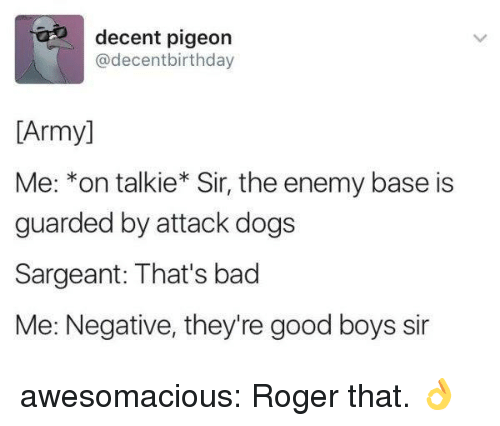 roger that: decent pigeon  @decentbirthday  [Army]  Me: *on talkie* Sir, the enemy base is  guarded by attack dogs  Sargeant: That's bad  Me: Negative, they're good boys sir awesomacious:  Roger that. 👌