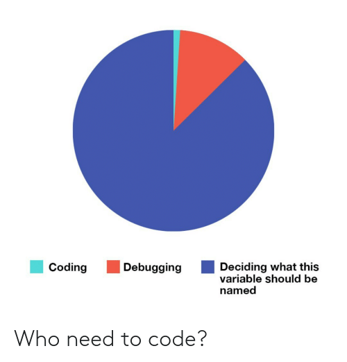 Code, Who, and Coding: Deciding what this  variable should be  named  Coding  Debugging Who need to code?