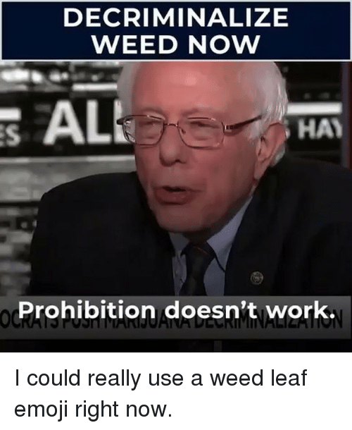 Emoji, Memes, and Weed: DECRIMINALIZE  WEED NOW  S ALL  HA  Prohibition doesn't work. I could really use a weed leaf emoji right now.