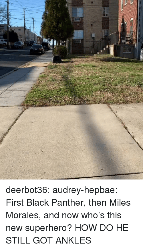Black Panther: deerbot36:  audrey-hepbae: First Black Panther, then Miles Morales, and now who's this new superhero?  HOW DO HE STILL GOT ANKLES