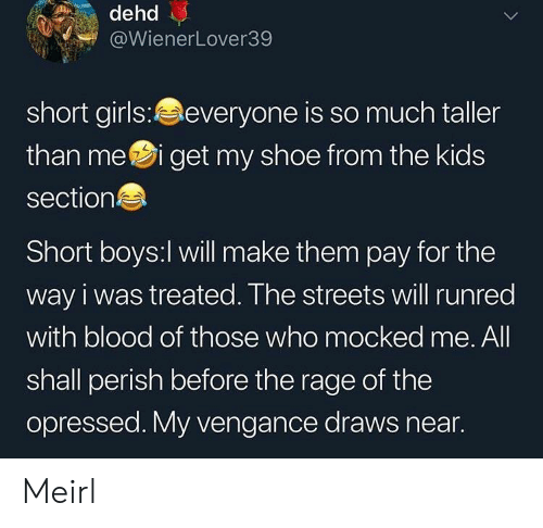 mei: dehd  @WienerLover39  short girls:everyone is so much taller  than mei get my shoe from the kids  section  Short boys:l will make them pay for the  way i was treated. The streets will runred  with blood of those who mocked me. All  shall perish before the rage of the  opressed. My vengance draws near. Meirl