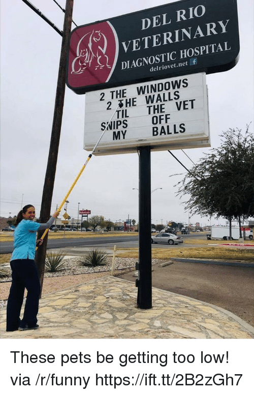 Veterinary: DEL RIO  VETERINARY  DIAGNOSTIC HOSPITAL  delriovet.net f  2 THE WINDOWS  2&HE WALLS  2  TIL THE VET  SNIPS OFF  MY BALLS These pets be getting too low! via /r/funny https://ift.tt/2B2zGh7