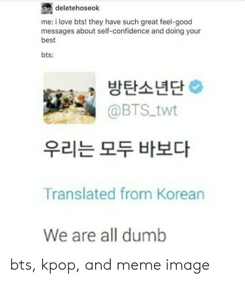 Twt: deletehoseok  me: i love bts! they have such great feel-good  messages about self-confidence and doing your  best  bts:  방탄소년단  @BTS twt  우리는 모두 바보다  Translated from Korean  We are all dumb bts, kpop, and meme image