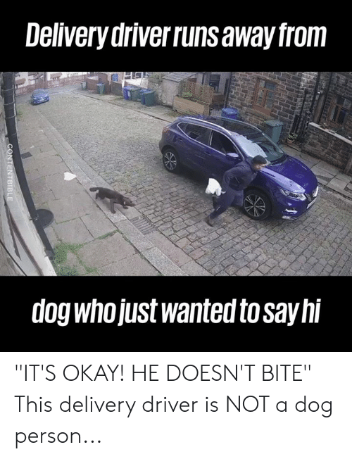 "Dank, Okay, and 🤖: Delivery driverruns away from  dog whojUst wanted to sayhi ""IT'S OKAY! HE DOESN'T BITE""  This delivery driver is NOT a dog person..."