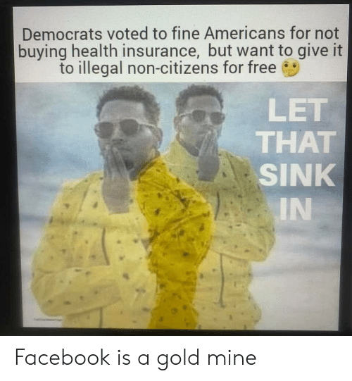 Facebook, Free, and Health Insurance: Democrats voted to fine Americans for not  buying health insurance, but want to give it  to illegal non-citizens for free  LET  THAT  SINK  IN Facebook is a gold mine