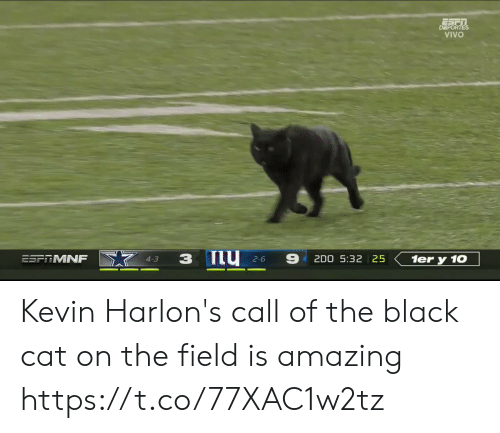 10 4: DEPORTES  VIVO  ESFRMNF  2D0 5:32 25  1er y 10  4-3  2-6 Kevin Harlon's call of the black cat on the field is amazing https://t.co/77XAC1w2tz