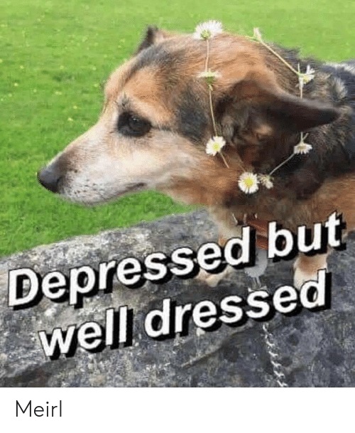 MeIRL, Depressed, and Well: Depressed but  well dressed Meirl