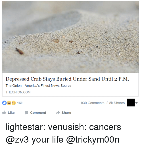 Life, News, and Target: Depressed Crab Stays Buried Under Sand Until 2 P.M  The Onion America's Finest News Source  THEONION.COM  830 Comments 2.8k Shares  LikeComment Share lightestar: venusish: cancers  @zv3 your life  @trickym00n