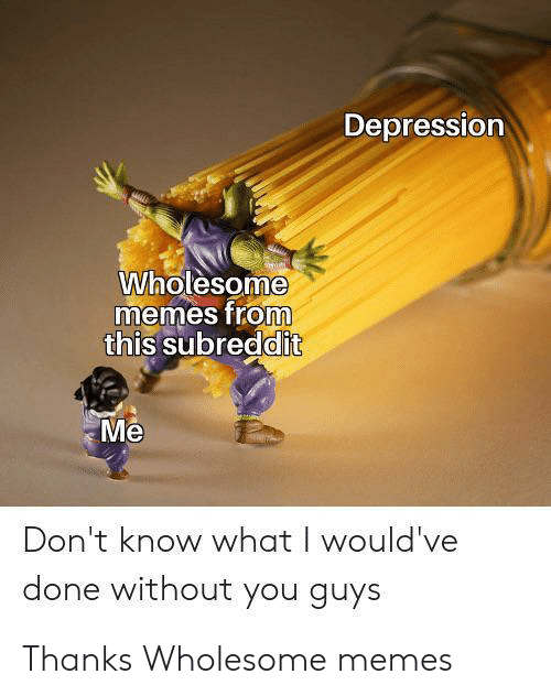 Wholesome Memes: Depression  Wholesome  memes from  this subreddit  Me  Don't know what I would've  done without you guys Thanks Wholesome memes