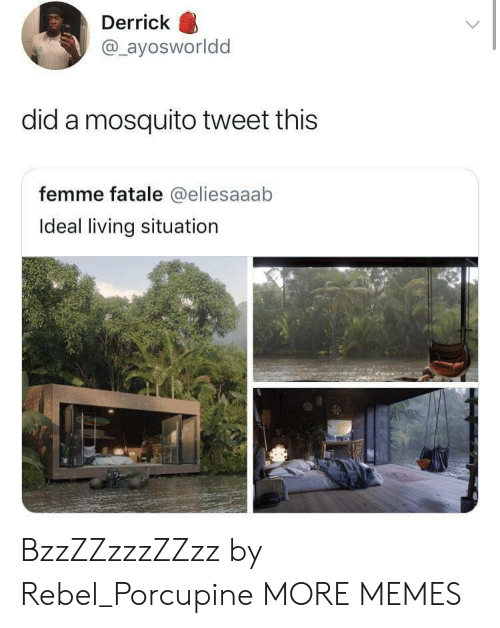 Dank, Memes, and Target: Derrick  @_ayosworldd  did a mosquito tweet this  femme fatale @eliesaaab  Ideal living situation BzzZZzzzZZzz by Rebel_Porcupine MORE MEMES