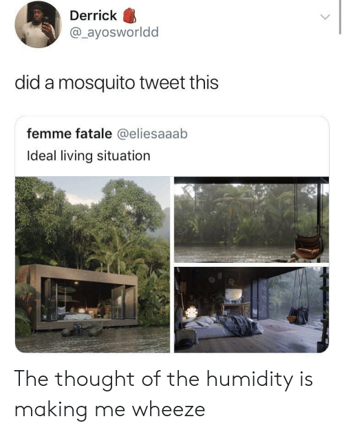femme: Derrick  @ayosworldd  did a mosquito tweet this  femme fatale @eliesaaab  Ideal living situation The thought of the humidity is making me wheeze