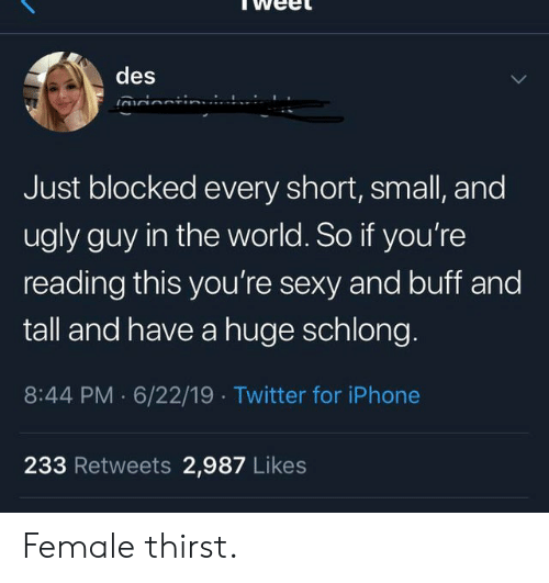 Youre Sexy: des  irionti  Just blocked every short, small, and  ugly guy in the world. So if you're  reading this you're sexy and buff and  tall and have a huge schlong.  8:44 PM 6/22/19 Twitter for iPhone  233 Retweets 2,987 Likes Female thirst.