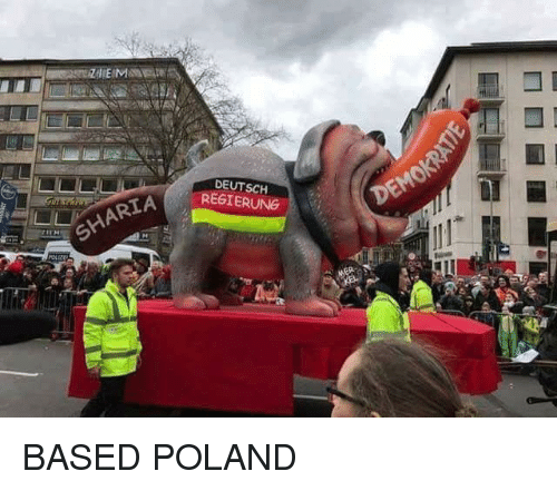 Memes, Poland, and 🤖: DEUTSCH  REGIERUNG  HARTA BASED POLAND