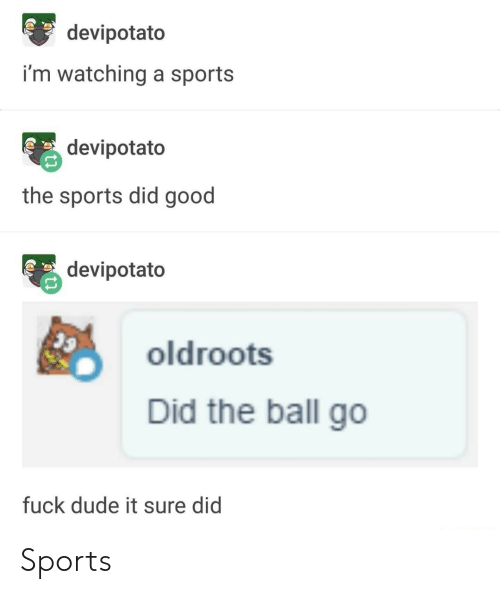 Dude, Sports, and Fuck: devipotato  i'm watching a sports  devipotato  the sports did good  devipotato  oldroots  Did the ball go  fuck dude it sure did Sports