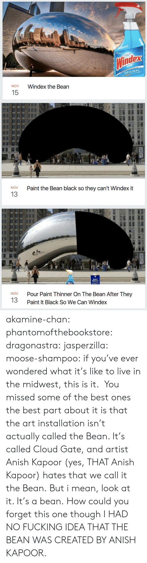 Fucking, Target, and Tumblr: dex  ORIGINAL  NOV  Windex the Bean  15   726.  2113  Paint the Bean black so they can't Windex it  NOV  13   726.  2113  Paint  Thinner  Pour Paint Thinner On The Bean After They  Paint It Black So We Can Windex  NOV  13 akamine-chan:  phantomofthebookstore:  dragonastra:  jasperzilla:  moose-shampoo: if you've ever wondered what it's like to live in the midwest, this is it.  You missed some of the best ones   the best part about it is that the art installation isn't actually called the Bean. It's called Cloud Gate, and artist Anish Kapoor (yes, THAT Anish Kapoor) hates that we call it the Bean. But i mean, look at it. It's a bean.   How could you forget this one though   I HAD NO FUCKING IDEA THAT THE BEAN WAS CREATED BY ANISH KAPOOR.