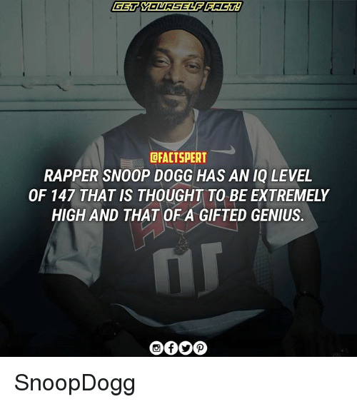 Snoop Dogge: DFACTSPERT  RAPPER SNOOP DOGG HAS AN IQ LEVEL  OF 147 THAT IS THOUGHT TO BE EXTREMELY  HIGH AND THAT OF A GIFTED GENIUS. SnoopDogg