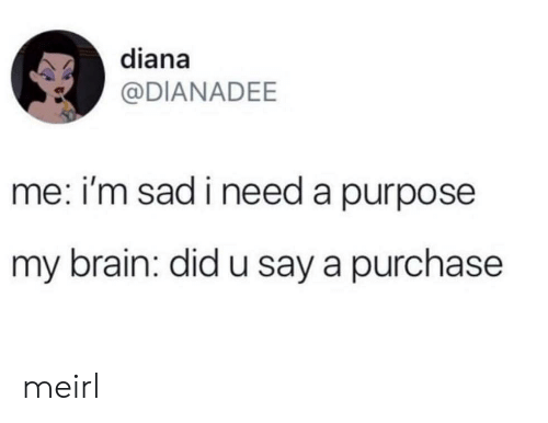 U Say: diana  @DIANADEE  me: i'm sad i need a purpose  my brain: did u say a purchase meirl