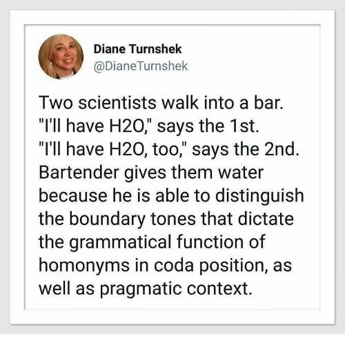 """grammatical: Diane Turnshek  @DianeTurnshek  Two scientists walk into a bar.  """"I'1l have H20,"""" says the 1st.  """"I'll have H20, too,"""" says the 2nd  Bartender gives them water  because he is able to distinguish  the boundary tones that dictate  the grammatical function of  homonyms in coda position, as  well as pragmatic context."""
