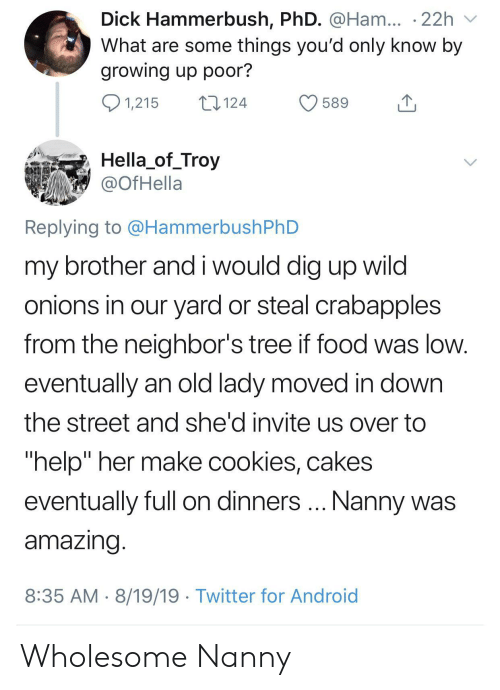 """Full On: Dick Hammerbush, PhD. @Ham... .22h  What are some things you'd only know by  growing up poor?  1,215  124  589  Hella_of_Troy  @OfHella  Replying to @HammerbushPhD  my brother and i would dig up wild  onions in our yard or steal crabapples  from the neighbor's tree if food was low.  eventually an old lady moved in down  the street and she'd invite us over to  """"help"""" her make cookies, cakes  Nanny was  eventually full on dinners  amazing.  8:35 AM 8/19/19 Twitter for Android Wholesome Nanny"""