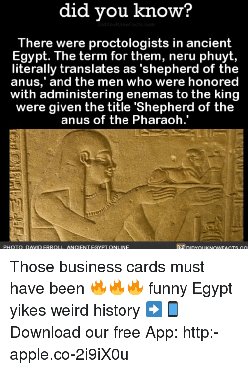 """ancient egypt: did did you know?  The  were proctologists in ancient  Egypt. The term for them, neru phuyt,  literally translates as """"shepherd of the  and the men who were honored  anus,' with administering enemas to the king  were given the title 'Shepherd of the  anus of the Pharaoh  PHOTO DAVID FRROLI ANCIENT EGYPT ON  NE Those business cards must have been 🔥🔥🔥 funny Egypt yikes weird history ➡📱Download our free App: http:-apple.co-2i9iX0u"""