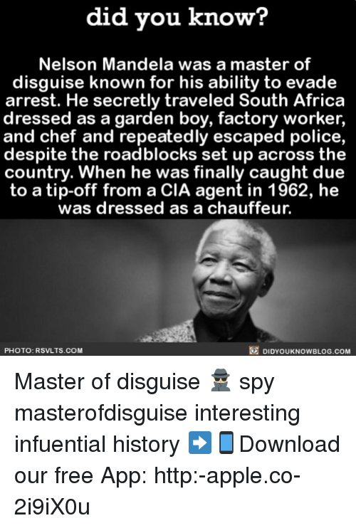 Africa, Apple, and Memes: did vou know?  Nelson Mandela was a master of  disguise known for his ability to evade  arrest. He secretly traveled South Africa  dressed as a garden boy, factory worker,  and chef and repeatedly escaped police,  despite the roadblocks set up across the  country. When he was finally caught due  to a tip-off from a CIA agent in 1962, he  was dressed as a chauffeur.  PHOTO: RSVLTS.COM  DIDYOUKNOWBLOG.COM Master of disguise 🕵🏼 spy masterofdisguise interesting infuential history ➡📱Download our free App: http:-apple.co-2i9iX0u