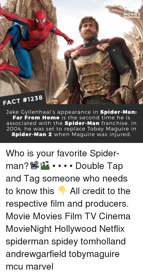 Memes, Movies, and Netflix: DID YO  MOVIES  FACT #1238  Jake Cyllenhaal's appearance in Spider-Man:  Far From Home is the second time he is  associated with the Spider-Man franchise. In  2004, he was set to replace Tobey Maguire in  Spider-Man 2 when Maguire was injured Who is your favorite Spider-man?📽️🎬 • • • • Double Tap and Tag someone who needs to know this 👇 All credit to the respective film and producers. Movie Movies Film TV Cinema MovieNight Hollywood Netflix spiderman spidey tomholland andrewgarfield tobymaguire mcu marvel