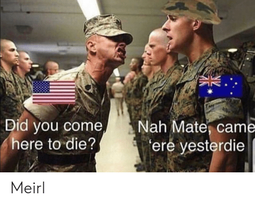 MeIRL, Did, and You: Did you come  here to die?  Nah Mate, came  ere yesterdie Meirl
