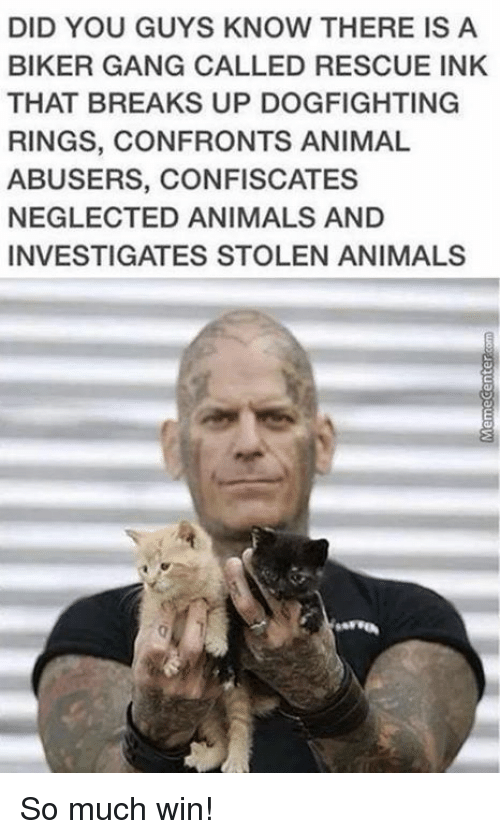 Animal Abuse: DID YOU GUYS KNOW THERE IS A  BIKER GANG CALLED RESCUE INK  THAT BREAKS UP DOGFIGHTING  RINGS, CONFRONTS ANIMAL  ABUSERS, CONFISCATES  NEGLECTED ANIMALS AND  INVESTIGATES STOLEN ANIMALS So much win!