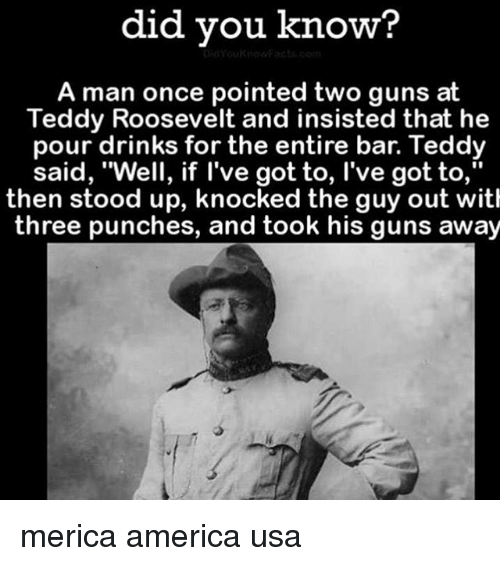 """America, Guns, and Memes: did you know?  A man once pointed two guns at  Teddy Roosevelt and insisted that he  pour drinks for the entire bar. Teddy  said, """"Well, if l've got to, l've got to,""""  then stood up, knocked the guy out with  three punches, and took his guns away merica america usa"""