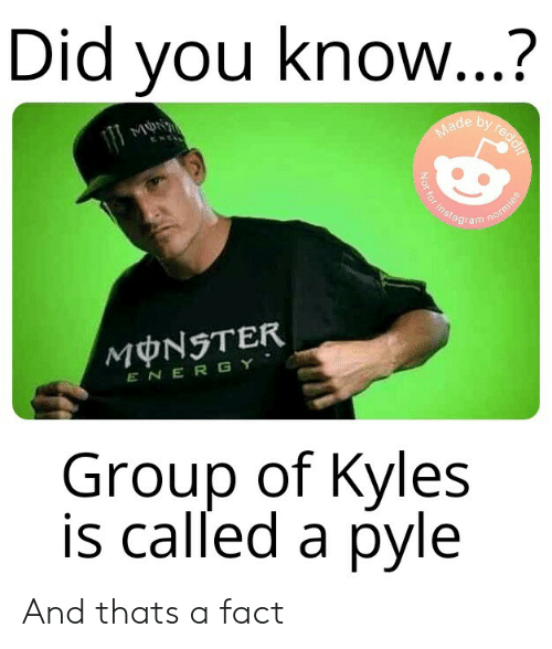 Energy, Instagram, and Monster: Did you know...?  by reddif  Made  Not for instagram  normies  MONSTER  ENERGY  Group of Kyles  is called a pyle And thats a fact
