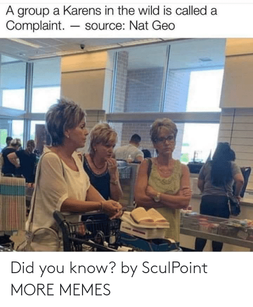 Did You: Did you know? by SculPoint MORE MEMES