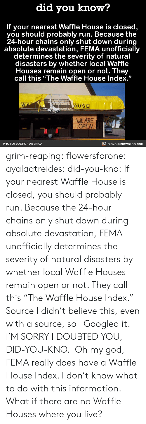 "fema: did you know?  If your nearest Waffle House is closed,  you should probably run. Because the  24-hour chains only shut down during  absolute devastation, FEMA unofficially  determines the severity of natural  disasters by whether local Waffle  Houses remain open or not. They  call this ""The Waffle House Index.""  OUSE  WE ARE  OPEN  PHOTO: JOE FOR AMERICA  DIDYOUKNOWBLOG.COM grim-reaping: flowersforone:   ayalaatreides:  did-you-kno: If your nearest Waffle House is closed,  you should probably run. Because the  24-hour chains only shut down during  absolute devastation, FEMA unofficially  determines the severity of natural  disasters by whether local Waffle  Houses remain open or not. They  call this ""The Waffle House Index.""  Source I didn't believe this, even with a source, so I Googled it. I'M SORRY I DOUBTED YOU, DID-YOU-KNO.  Oh my god, FEMA really does have a Waffle House Index. I don't know what to do with this information.  What if there are no Waffle Houses where you live?"