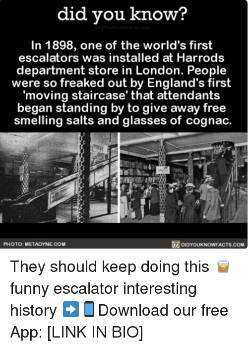 Escalates: did you know?  In 1898, one of the world's first  escalators was installed at Harrods  department store in London. People  were so freaked out by England's first  moving staircase' that attendants  began standing by to give away free  smelling and glasses of cognac.  PHOTO: METADYNECOM  DIDYOUKNOWFACTS.COM They should keep doing this 🥃 funny escalator interesting history ➡📱Download our free App: [LINK IN BIO]