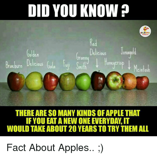 Eata: DID YOU KNOW  Jonagold  Delicious  Golden  Grann  Braubern Delicious  THERE ARE SO MANY KINDS OFAPPLETHAT  IF YOU EATA NEW ONE EVERYDAW, IT  WOULD TAKE ABOUT 20 YEARS TO TRY THEMALL Fact About Apples.. ;)