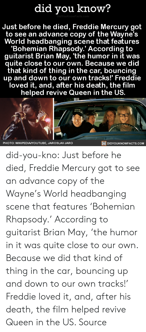 News, Tumblr, and youtube.com: did you know?  Just before he died, Freddie Mercury got  to see an advance copy of the Wayne's  World headbanging scene that features  'Bohemian Rhapsody.' According to  guitarist Brian May, 'the humor in it was  quite close to our own. Because we did  that kind of thing in the car, bouncing  up and down to our own tracks!' Freddie  loved it, and, after his death, the film  helped revive Queen in the US.  PHOTO: WIKIPEDIAYOUTUBE, JAROSLAV JARO  回DIDYOUKNOWFACTS.COM did-you-kno:  Just before he died, Freddie Mercury got  to see an advance copy of the Wayne's  World headbanging scene that features  'Bohemian Rhapsody.' According to  guitarist Brian May, 'the humor in it was  quite close to our own. Because we did  that kind of thing in the car, bouncing  up and down to our own tracks!' Freddie  loved it, and, after his death, the film  helped revive Queen in the US.  Source