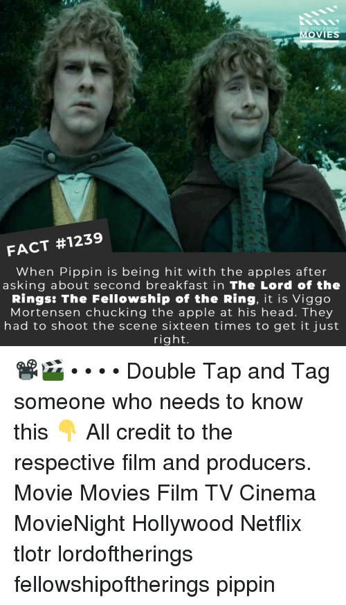 Just Right: DID YOU KNOw  MOVIES  FACT #1239  When Pippin is being hit with the apples after  asking about second breakfast in The Lord of the  Rings: The Fellowship of the Ring, it is Viggo  Mortensen chucking the apple at his head. They  had to shoot the scene sixteen times to get it just  right. 📽️🎬 • • • • Double Tap and Tag someone who needs to know this 👇 All credit to the respective film and producers. Movie Movies Film TV Cinema MovieNight Hollywood Netflix tlotr lordoftherings fellowshipoftherings pippin