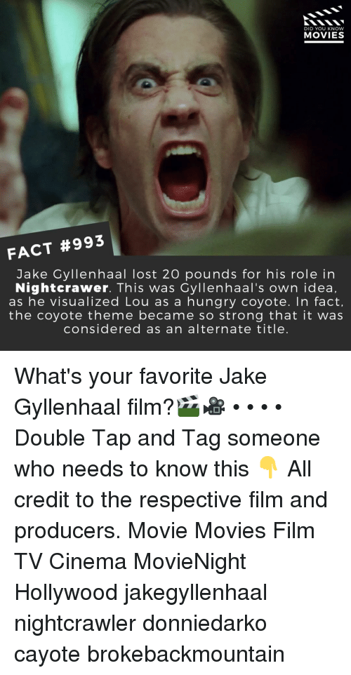 Nightcrawler: DID YOU KNOW  MOVIES  FACT #993  Jake Gyllenhaal lost 20 pounds for his role in  Nightcrawer. This was Cyllenhaal's own idea,  as he visualized Lou as a hungry coyote. In fact,  the coyote theme became so strong that it was  considered as an alternate title. What's your favorite Jake Gyllenhaal film?🎬🎥 • • • • Double Tap and Tag someone who needs to know this 👇 All credit to the respective film and producers. Movie Movies Film TV Cinema MovieNight Hollywood jakegyllenhaal nightcrawler donniedarko cayote brokebackmountain