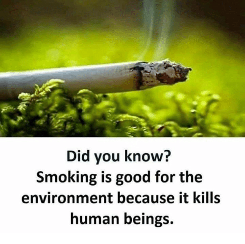 Memes, Smoking, and Good: Did you know?  Smoking is good for the  environment because it kills  human beings.