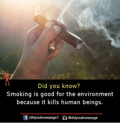 Memes, Smoking, and Good: Did you know?  Smoking is good for the environment  because it kills human beings.  /didyouknowpagel @didyouknowpage