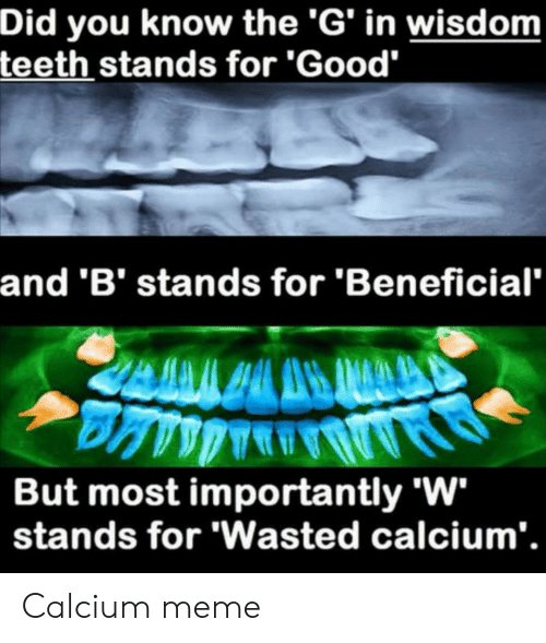 """Meme, Good, and Dank Memes: Did you know the 'G' in wisdom  teeth stands for 'Good""""  and 'B' stands for 'Beneficial  But most importantly 'W  stands for 'Wasted calcium'. Calcium meme"""