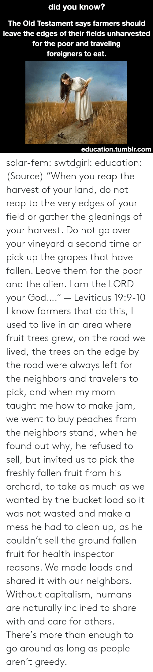"God, Tumblr, and Alien: did  you know?  The Old Testament says farmers should  leave the edges of their fields unharvested  for the poor and traveling  foreigners to eat.  education.tumblr.com solar-fem:  swtdgirl:  education:   (Source) ""When you reap the harvest of your land, do not reap to the very edges of your field or gather the gleanings of your harvest. Do not go over your vineyard a second time or pick up the grapes that have fallen. Leave them for the poor and the alien. I am the LORD your God…."" — Leviticus 19:9-10     I know farmers that do this, I used to live in an area where fruit trees grew, on the road we lived, the trees on the edge by the road were always left for the neighbors and travelers to pick, and when my mom taught me how to make jam, we went to buy peaches from the neighbors stand, when he found out why, he refused to sell, but invited us to pick the freshly fallen fruit from his orchard, to take as much as we wanted by the bucket load so it was not wasted and make a mess he had to clean up, as he couldn't sell the ground fallen fruit for health inspector reasons. We made loads and shared it with our neighbors.  Without capitalism, humans are naturally inclined to share with and care for others. There's more than enough to go around as long as people aren't greedy."