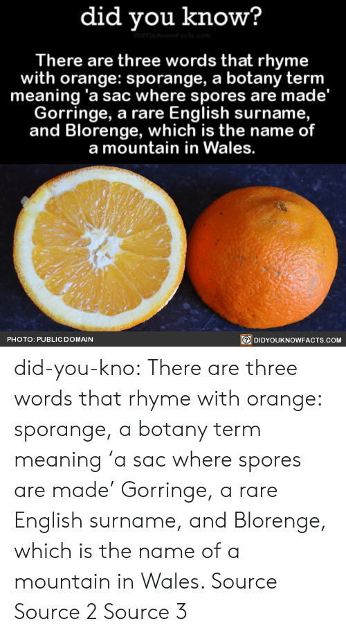 spores: did you know?  There are three words that rhyme  with orange: sporange, a botany term  meaning 'a sac where spores are made'  Gorringe, a rare English surname,  and Blorenge, which is the name of  a mountain in Wales.  PHOTO: PUBLIC DOMAIN  回DIDYOUKNOWFACTS.COM did-you-kno:  There are three words that rhyme with orange: sporange, a botany term meaning 'a sac where spores are made'  Gorringe, a rare English surname, and Blorenge, which is the name of a mountain in Wales.  Source Source 2 Source 3