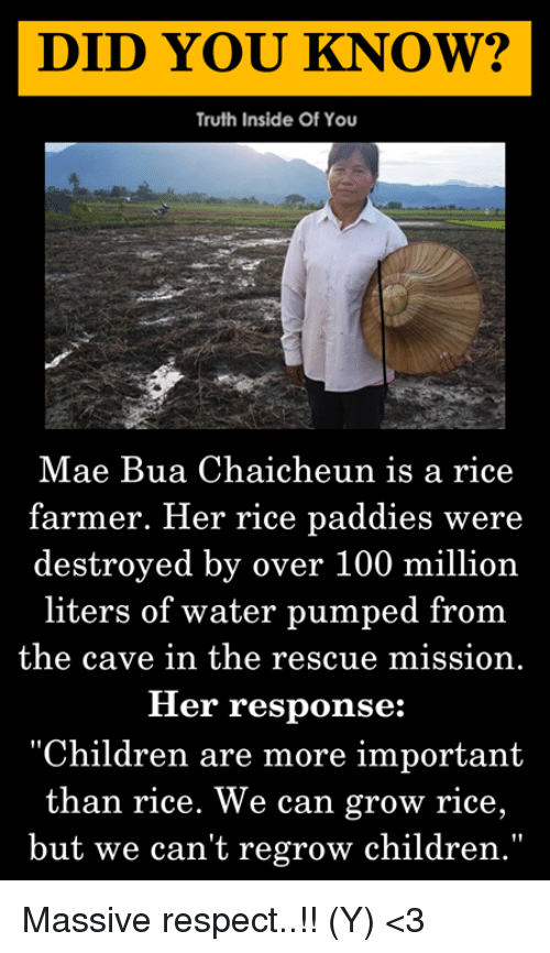 """Anaconda, Children, and Memes: DID YOU KNOW?  Truth Inside Of You  Mae Bua Chaicheun is a rice  farmer. Her rice paddies were  destroyed by over 100 million  liters of water pumped from  the cave in the rescue mission.  Her response:  """"Children are more important  than rice. We can grow rice,  but we can't regrow children."""" Massive respect..!! (Y) <3"""
