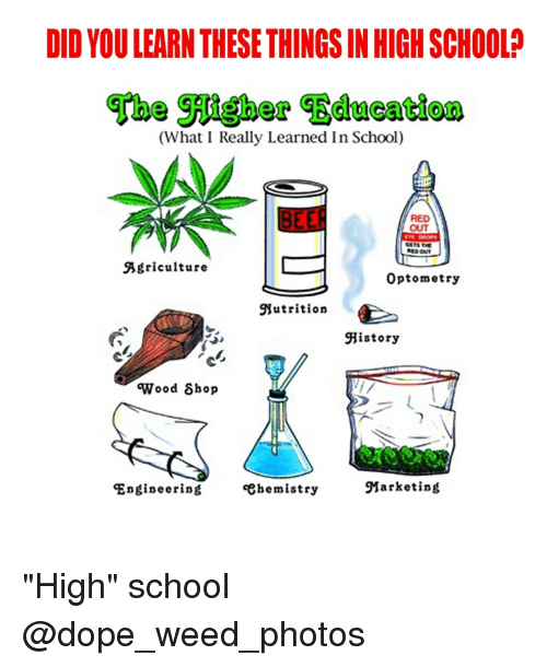 "agriculture: DID YOU LEARN THESE THINGS IN HIGH SCHOOL?  (What I Really Learned In School)  RED  OUT  Agriculture  Optometry  Nutrition  History  'Wood δhop  Engineering  «ehemistry  Marketing ""High"" school @dope_weed_photos"