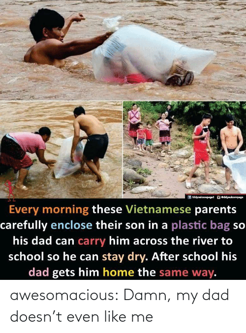 Vietnamese: /didyouknowpaget odidyouknewpage  Every morning these Vietnamese parents  carefully enclose their son in a plastic bag so  his dad can carry him across the river to  school so he can stay dry. After school his  dad gets him home the same way. awesomacious:  Damn, my dad doesn't even like me